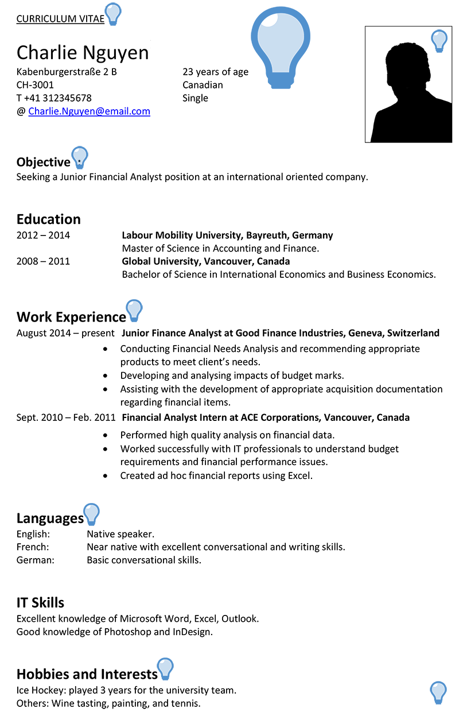 Switzerland Cv Sample Careerprofessorworks